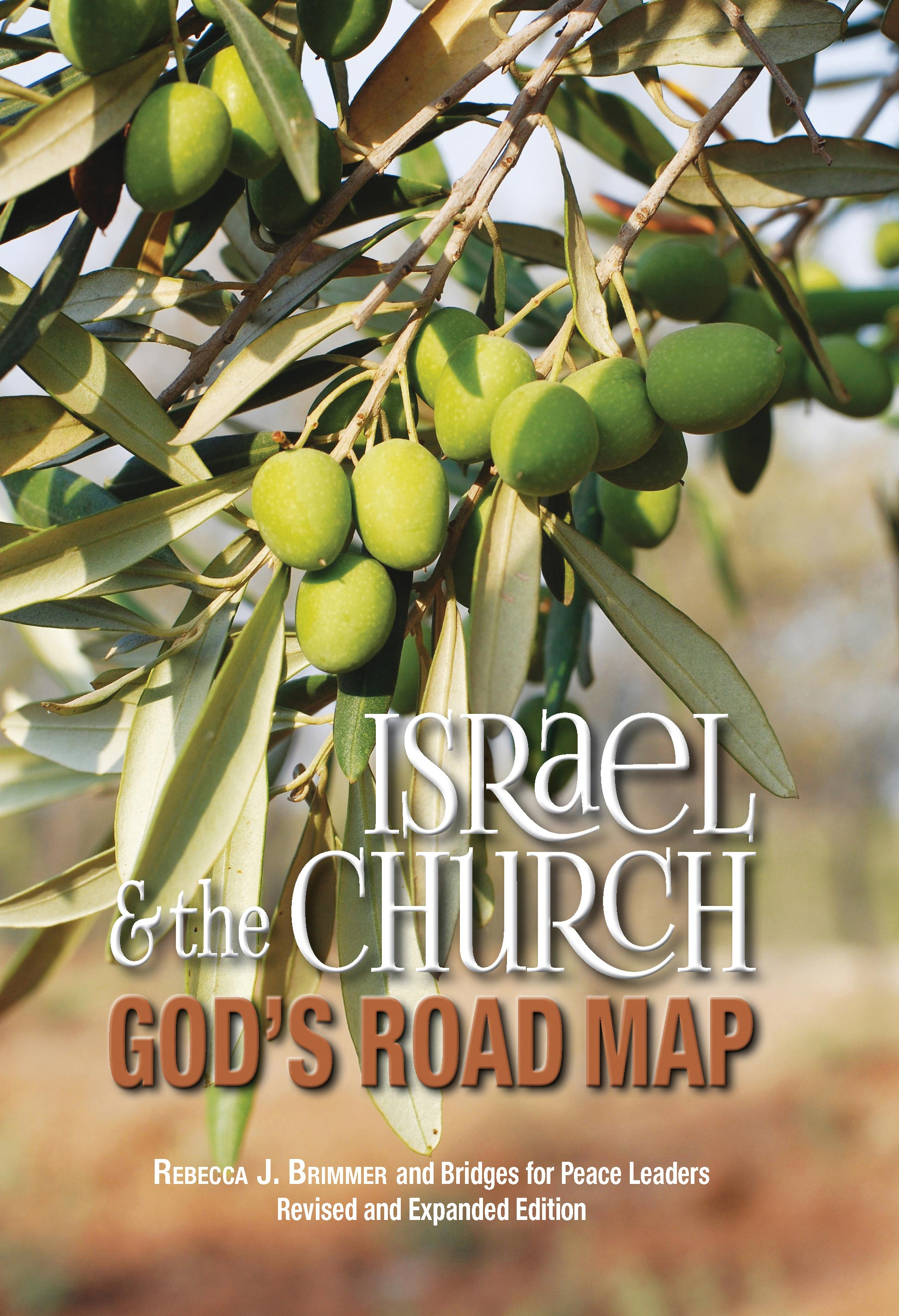 Picture of: 3 Israel The Church God S Road Map Bridges For Peace In The United States Of Americabridges For Peace In The United States Of America